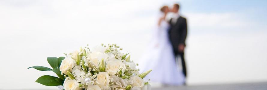 criar site de casamento