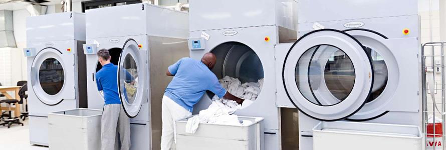 criar site de lavanderia