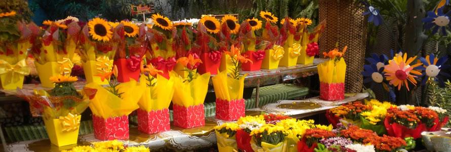 Como criar site de floricultura